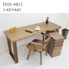 DIS-481