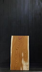 欅(ケヤキ)